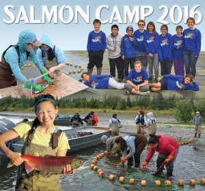 Salmon Camp 2016 Collage