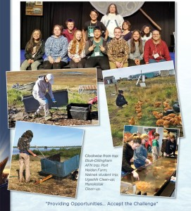 BBEDC 2018 Arctic Tern WEB2 (2)